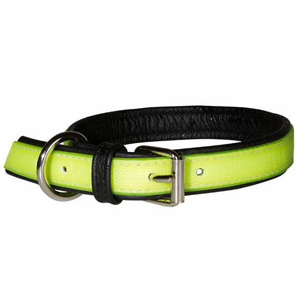 Julius-K9 Canada IDC® lumino fluorescent dog collar