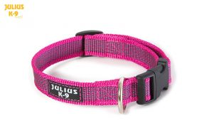 grey-pink-collar-julius-k9