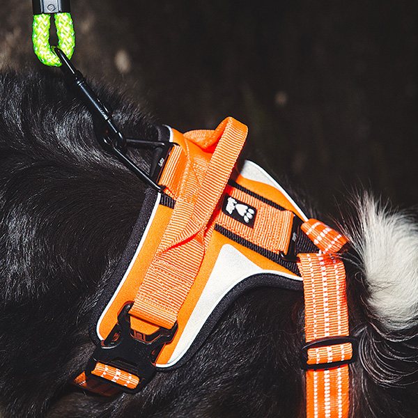 hurtta_active_harness_high_visibility_02