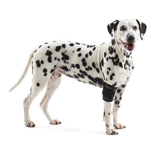 Coudière de protection pour chiens Kruuse