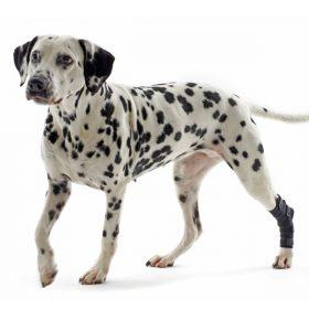 Protecteur de jarret pour chiens Kruuse