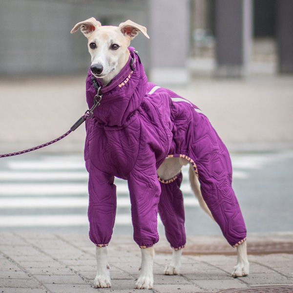 Dog Coats For Sale Canada