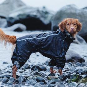 Combinaison de pluie pour chien Hurtta