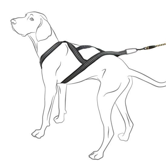 Set Of Hurtta Jogging Dog Belt X Sport Harness Casual Rope Leash