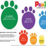 Pawz-Dog-Boots-Size-Chart-cm-2_EN