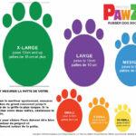 Pawz-Dog-Boots-Size-Chart-cm-2_FR